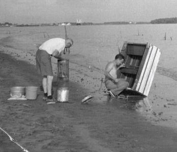 Shrimping on the Mississippi