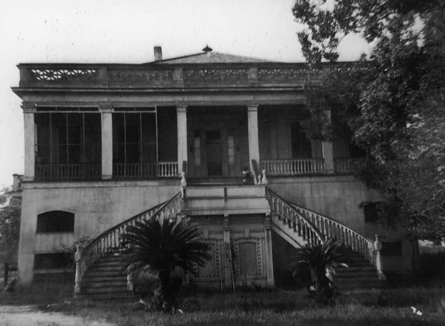 Ellington Plantation