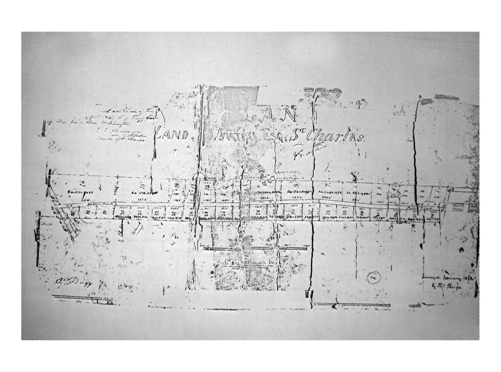 Settlement of Flaggville