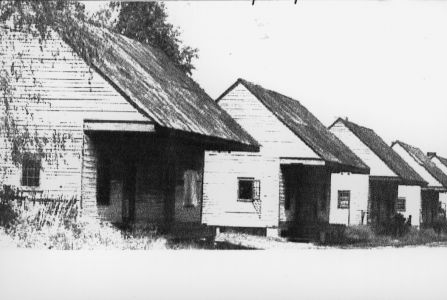 Cabins - Image