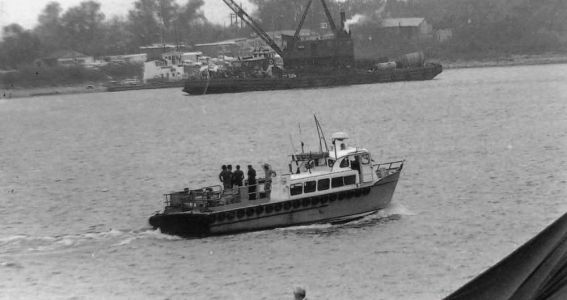 Luling/Destrehan Ferry Disaster - Image