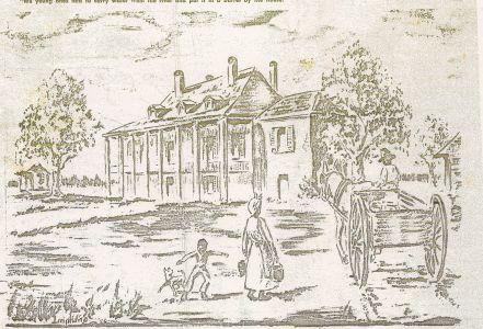 Plantation Sketch